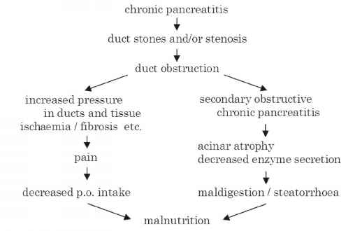 Muscle Loss Malnutrition Exam